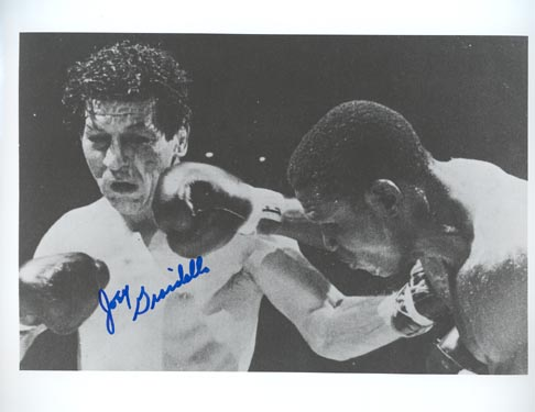 Joey Giardello and Dick Tiger in middleweight boxing  championship fight